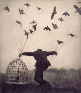 Indefension aprendida - Jaula pájaros