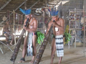 Indios Dassana