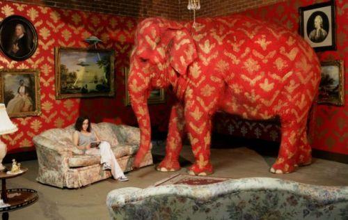 Elefante en el salón