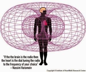 Nassim Haramein - Brain and heart
